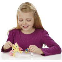 My Little Pony Poník s kamarádem a doplňky - Fluttershy 4