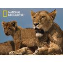 National Geographic 3D Puzzle Lvi 500 dílků 2