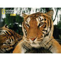 National Geographic Kids 3D Puzzle Tygr 100 dílků figurka 2