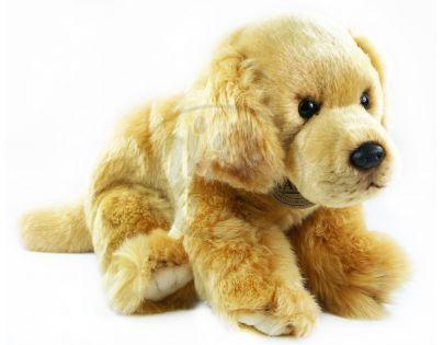 Plyšový pes zlatý retriever 28 cm