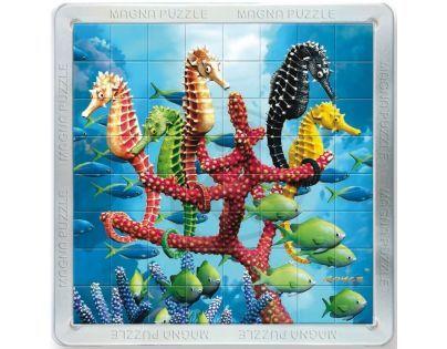 Piatnik 3D Magnetické puzzle - Mořští koníci