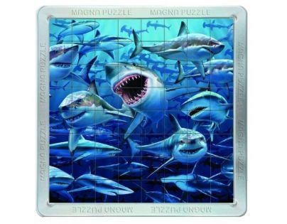 Piatnik 3D Magnetické puzzle - Žraloci