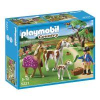 Playmobil 5227 - Koňský trénink