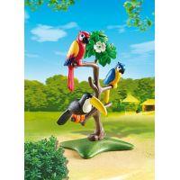 Playmobil 6653 Papoušci a tukan na stromě 2