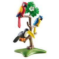 Playmobil 6653 Papoušci a tukan na stromě 3