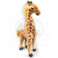 Plyšová Žirafa 40 cm