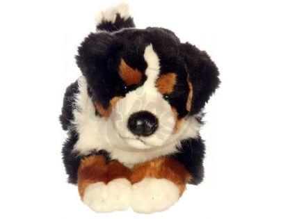 Plyšový pes Bernský Salašnický 35 cm