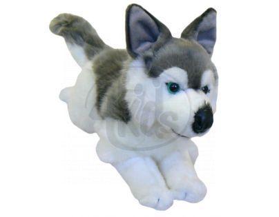 Plyšový pes Husky 34 cm