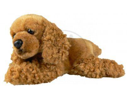 Plyšový pes kokršpaněl 23 cm