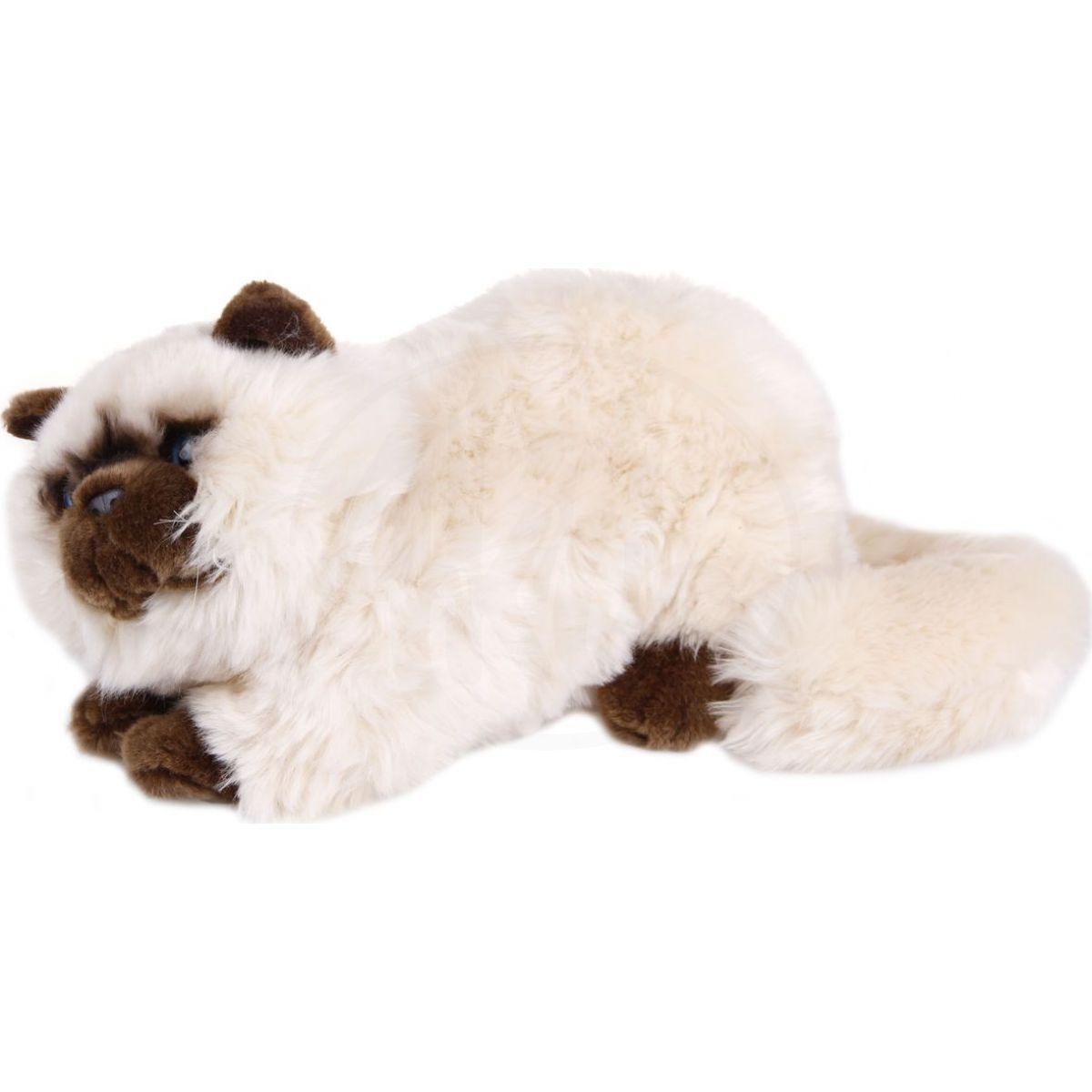 Výsledek obrázku proplyšová kočička