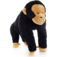 Plyš Šimpanz 70 cm