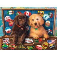 Castorland Puzzle 300 dílků Štěnata Labradorů v kufru