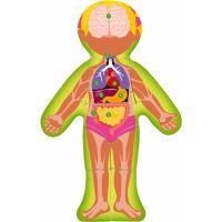 Woody Puzzle Lidské tělo Holka CZ 3