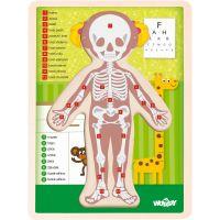 Woody Puzzle Lidské tělo Holka CZ 2