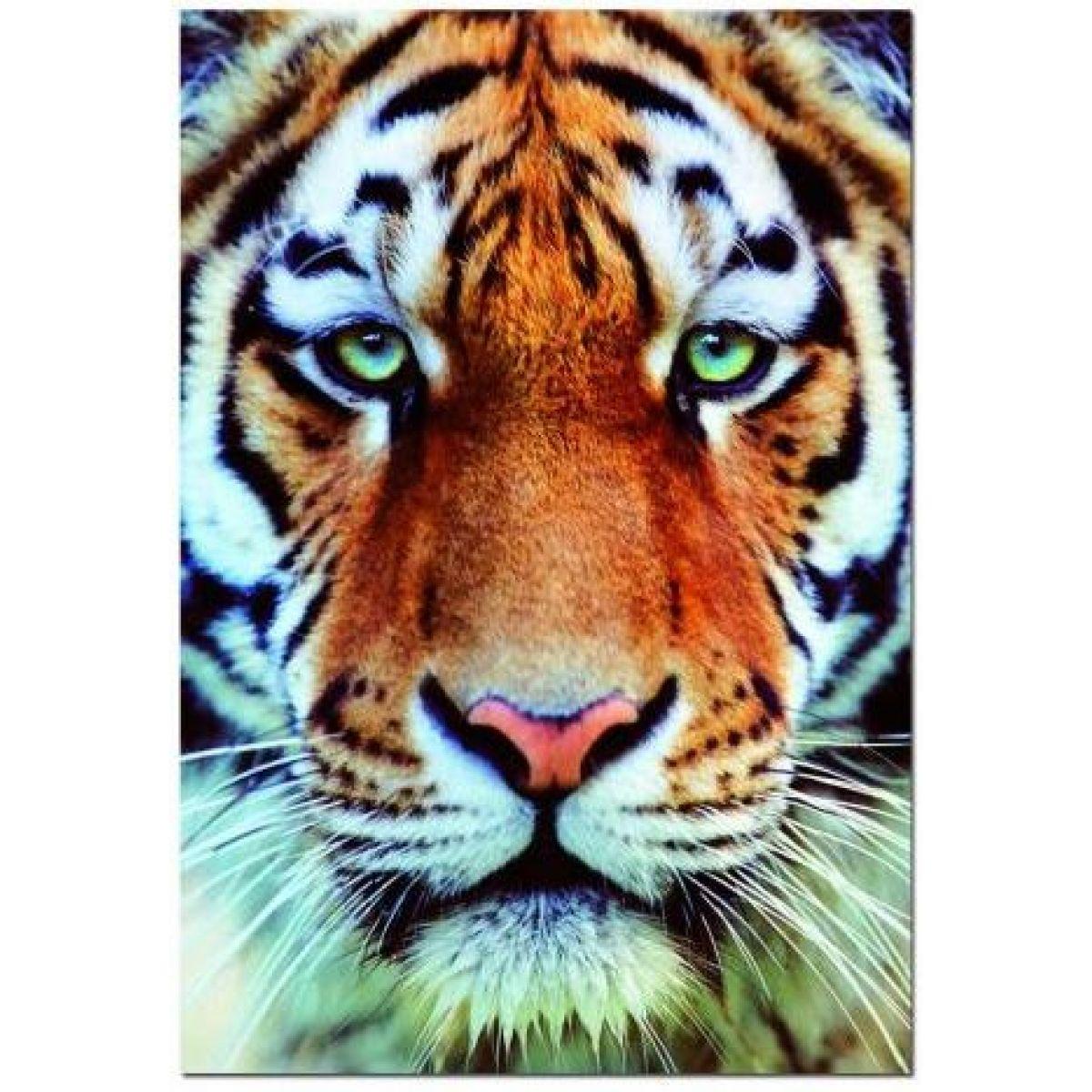 Puzzle Tygr detail 1000 d