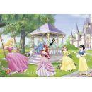 Ravensburger Disney Princess Kouzelné princezny 2 x 24 dílků 2