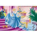 Ravensburger 07477 - Kostky Princezny 12ks 4