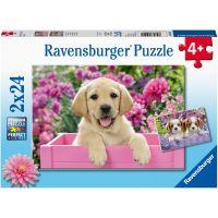 Ravensburger puzzle Kouzelná štěňata 2 x 24 dílků
