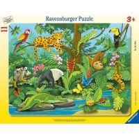 Ravensburger Puzzle Zvířata v deštném pralese 11 dílků
