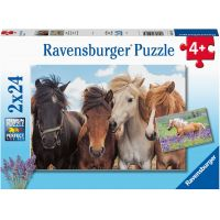 Ravensburger Puzzle Fotky koní 2 x 24 dílků