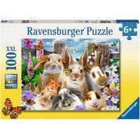 Ravensburger puzzle Zajícovo selfie 100 dílků