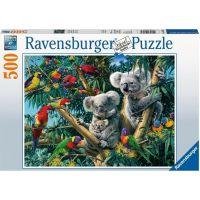 Ravensburger puzzle Koaly na stromě 500 dílků