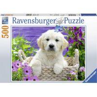 Ravensburger puzzle Roztomilý zlatý retriever 500 dílků