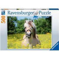 Ravensburger puzzle Bílý kůň 500 dílků