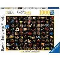Ravensburger puzzle National Geographic Ohromující zvířata 1000 dílků