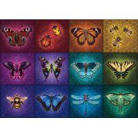 Ravensburger Puzzle Krásný okřídlený hmyz 1000 dílků
