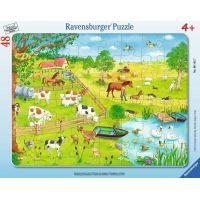 Ravensburger Puzzle Procházka na zemi 48 dílků
