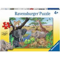 Ravensburger Puzzle Safari zvířata 60 dílků