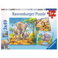 Ravensburger Puzzle Divoká zvířata 3 x 49 dílků