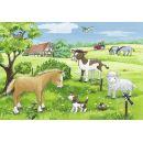 Ravensburger Puzzle 075829 Domácí zvířátka 2x12 dílků 3