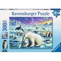 Ravensburger Puzzle Polární zvířata 300XXL dílků