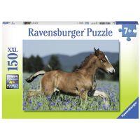 Ravensburger Puzzle Premium 100248 Hříbě 150 XXL dílků
