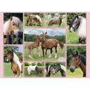 Ravensburger XXL Nádherní koně 300 dílků 2