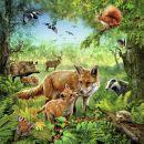 Ravensburger Země živočichů 3 x 49 dílků 2
