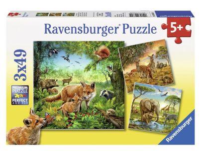 Ravensburger Země živočichů 3 x 49 dílků
