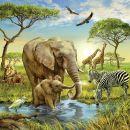 Ravensburger Země živočichů 3 x 49 dílků 3