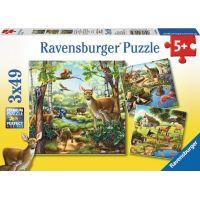 Ravensburger Puzzle Zvířata v zoo, lese nebo v domě 49 dílků