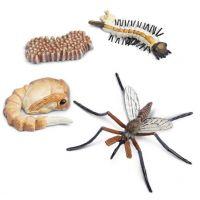 Safari Ltd Životní cyklus Komár