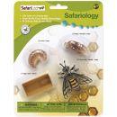 Safari Ltd Životní cyklus Včela 3