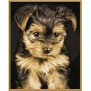 Schipper Classics Jorkšír štěně 24 x 30 cm 3