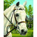 Schipper Classics Kůň bílý 24 x 30 cm 2
