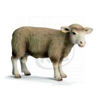 Schleich 13266 - Zvířátko - skopec