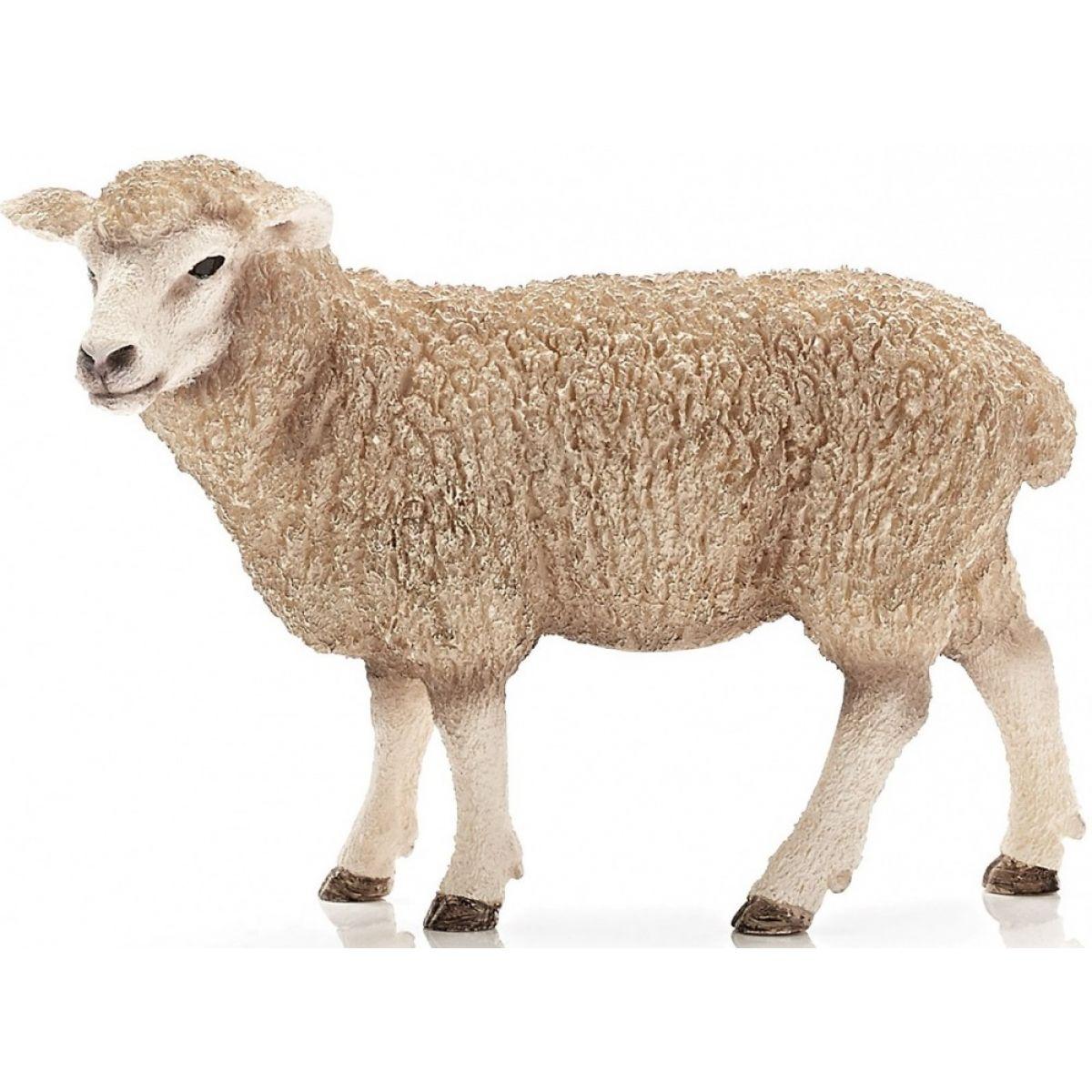 Schleich 13743 Ovce