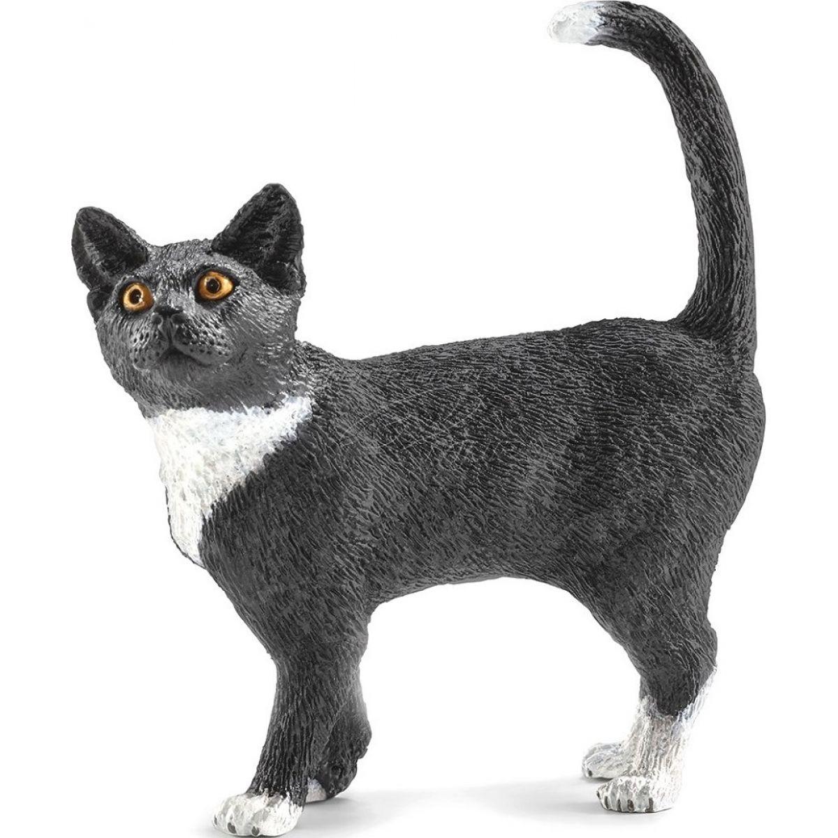 vlastní výstřel černá kočička černý péro ve velkém bílém zadku