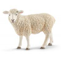 Schleich 13882 Ovce