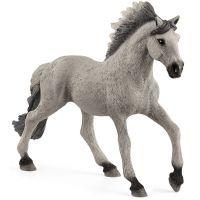 Schleich Zvířátko hřebec Sorraia Mustang